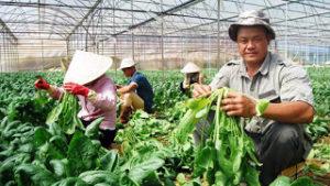 Nông nghiệp soán 'ngôi vương' kênh đầu tư